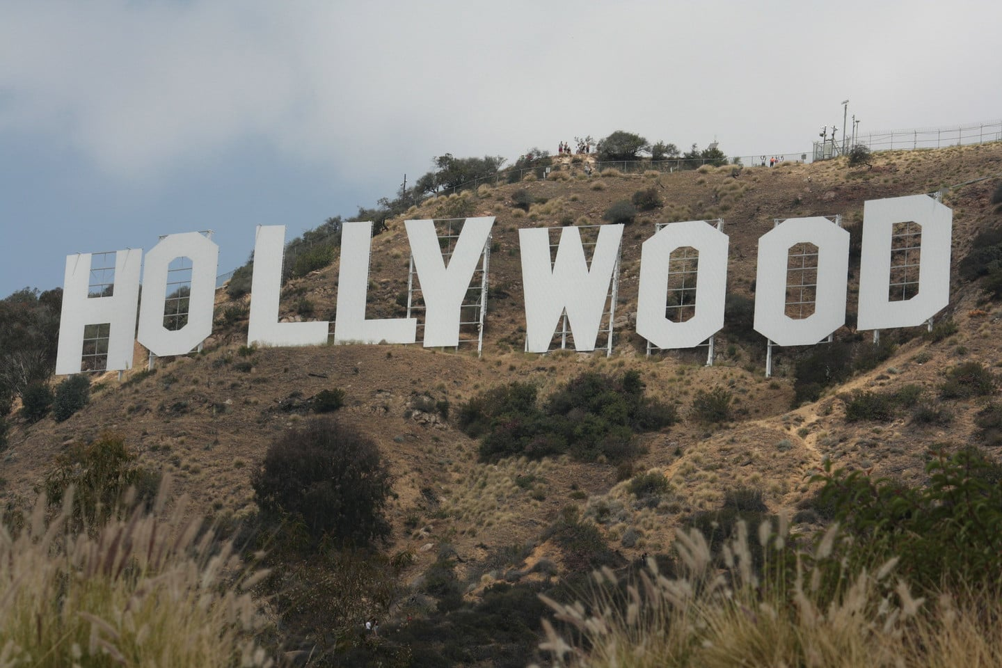 Television Hollywood