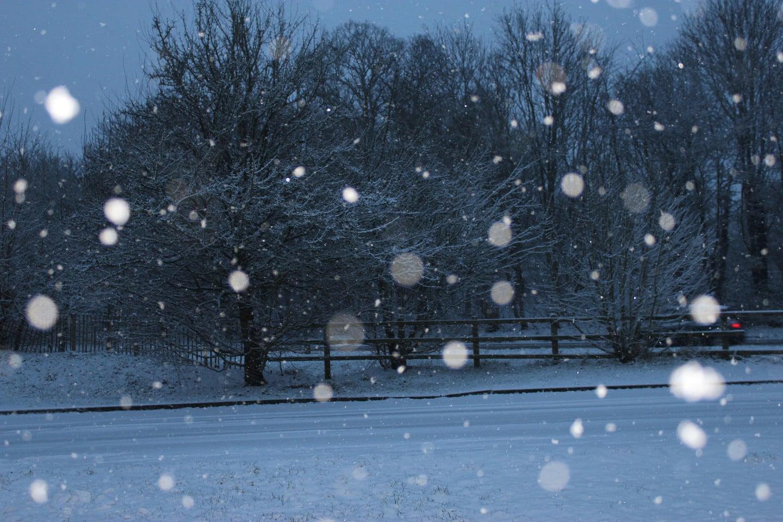 Snow Storm Winter Weather