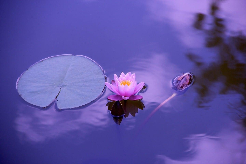 Meditation Stones Coast Zen