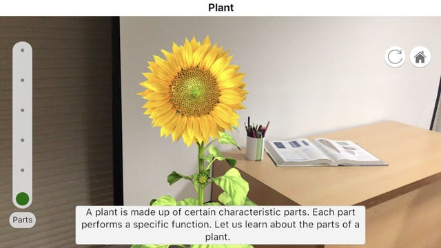 Learn More About the Life of a Plant Using AR in Plantale