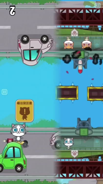Cats Carnival -2 Player Games