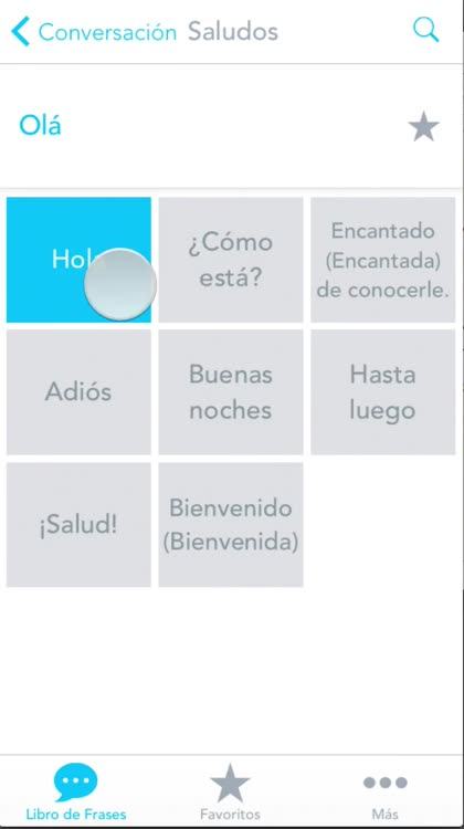 Free spanish to brazilian portuguese phrasebook with voice odyssey translator is perfect for travelers who want a robust phrasebook that works offline and is full of useful travel phrases with voice m4hsunfo