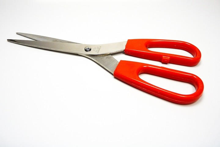 Clips scissors