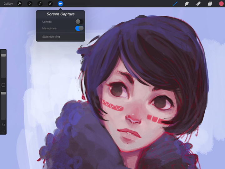 Procreate for iPad Screen Capture