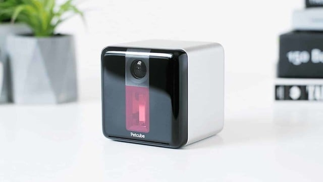 Keep an Eye on Your Pet with the 1080P PetCube Camera, Cheaper than Ever