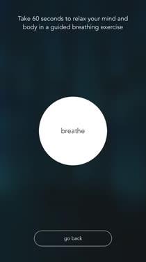Find Your White Noise Zen in Wildfulness 2